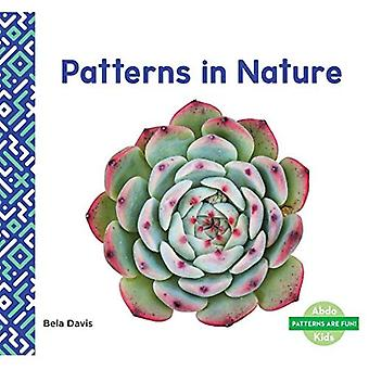 Patterns in Nature (Patterns are Fun!)