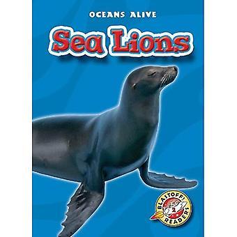 Zeeleeuwen (Oceans levend)