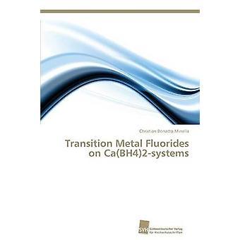 Overgangsmetalen fluoriden op CaBH42systems door Bonatto Minella Christian