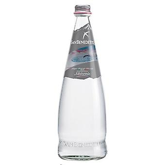 San Benedetto Water Natural Glass-( 250 Ml X 24 Bottles )
