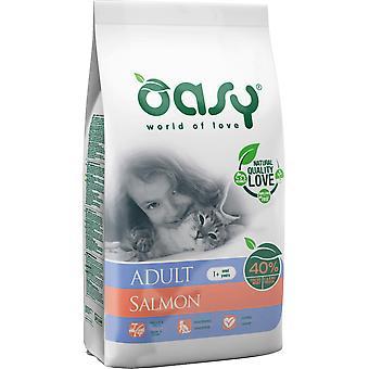 Oasy Erwachsener Lachs (Katzen , Katzenfutter  , Trockenfutter)