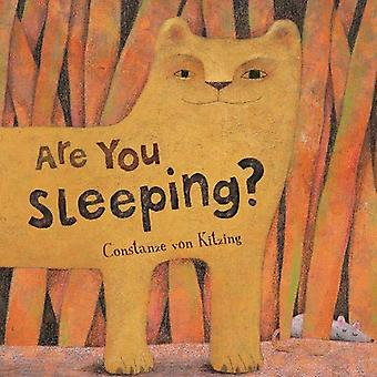 Are You Sleeping? by Constanze von Kitzing - 9781782854029 Book