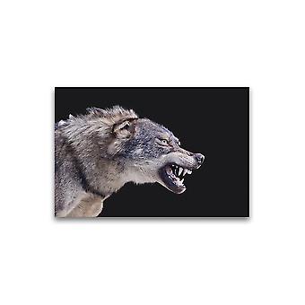 Amazing Wolf Taxidermy Plakat -Bilde av Shutterstock