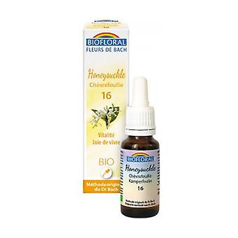 Honeysuckle 20 ml kukka eliksiiri