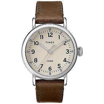 Timex | Mens Olive Leather Strap | Grey Dial | TW2T20100D7PF Watch