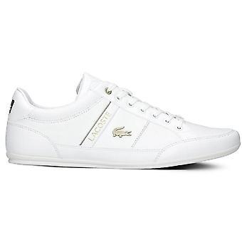 Lacoste Chaymon 741CMA006321G universal all year men shoes