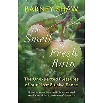 De geur van verse regen: de onverwachte geneugten van ons meest ongrijpbare gevoel