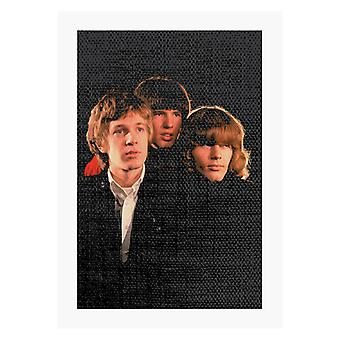 TV Times Walker Brothers Band Portrait A4 Druck