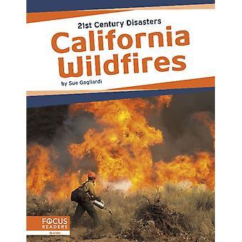 21st Century katastrofer Kalifornien skogsbränder av Sue Gagliardi