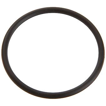 Pentair PacFab 6020018 O-Ring for Pump Adapter