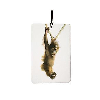 Swinging Baby Orangutan Car Air Freshener