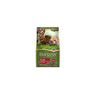 Burgess Excel Cranberry And Ginseng Mature Rabbit Nuggets