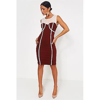 Molly Mesh Bodycon Dress