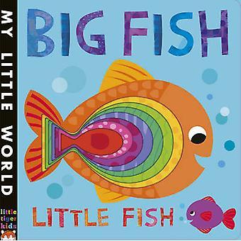 Big Fish - pesciolino - un libro frizzante degli opposti di Fhiona Galloway