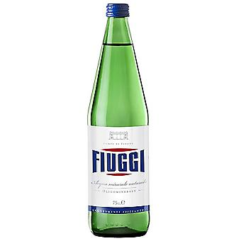 Fiuggi Mineral Water Natural-( 1 Lt X 6 Bouteilles )