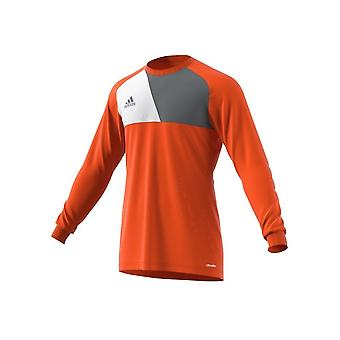 Adidas Assita 17 AZ5398JR football all year boy sweatshirts