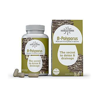 B-Polyporus 60 vegetable capsules