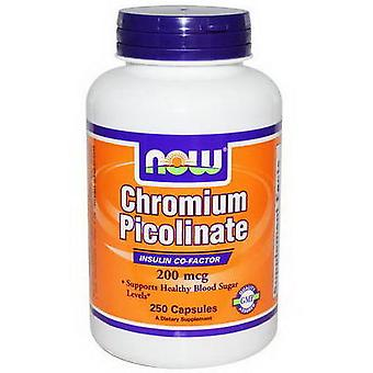 Now Foods Chromium Picolinate 200 mg 100 Kapseln