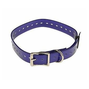 Num'axes Polyurethane Strap - Purple (Dogs , Collars, Leads and Harnesses , Leads)