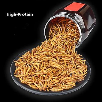 Freeze Dried Nutritious Protein Mealworm Food, Ant Farm Accessories