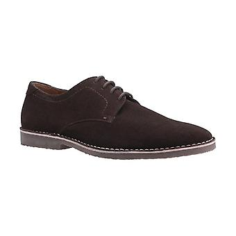 Hush Chiots Archie Mens Suede Derby Chaussures Brown