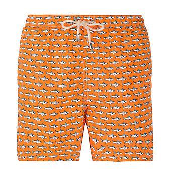 Lighting Shark Micro Fantasy Swim Shorts