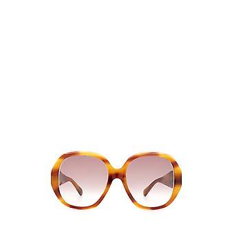 Gucci GG0796S havana kvindelige solbriller