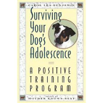 Surviving Your Dog's Adolescence - A Positive Training Program by Caro
