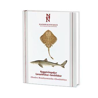 Dorsal animals: lansetfishes-cartilaginous fishes. 9789188506740