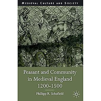 Peasant and Community in Medieval England, 1200-1500 (Medieval Culture & Society)