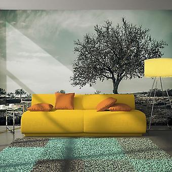 Papier peint - arbre - vintage