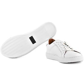 טומי הילפיגר Ount FM56820399100 אוניברסלי כל השנה נעליים גברים