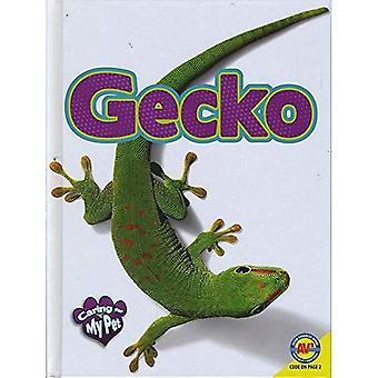 Gecko (zorg voor mijn huisdier)