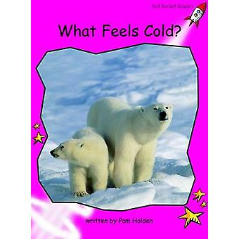 What Feels Cold? - Emergent (International edition) by Pam Holden - 97