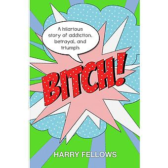 Bitch  A Hilarious Story of Addiction Betrayal and Triumph by Fellows & Harry