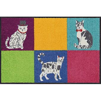 Salonloewe Doormat Ginas Friends 50 x 75 cm wasbare vuilmat