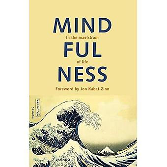 Mindfulness: In de maalstroom van het leven