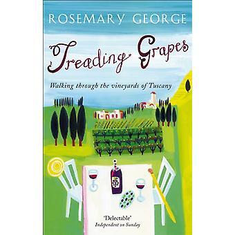 Treading Grapes - Walking Through The Vineyards Of Tuscany by Rosemary
