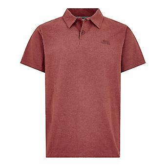 חולצת קוואי פולו