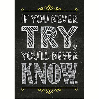 If You Never Try Inspire U Poster - Ctp6745