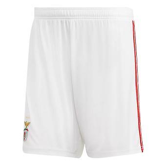 2018-2019 Benfica Adidas hjem Shorts (hvit)