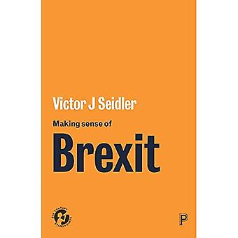Att göra känsla av Brexit: demokrati och Europa osäkert Futures (21st Century ställningstaganden)