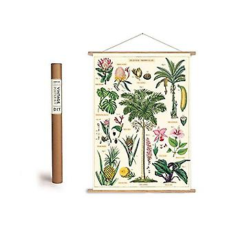 Cavallini Tropical Plants Wrapping Paper Poster