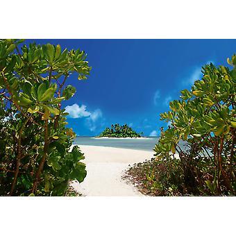 Tapete Mural Island