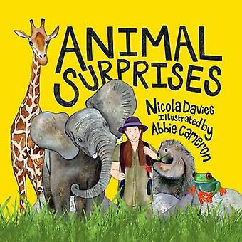 Animal Surprises by Nicola Davies & Illustrated by Abbie Cameron