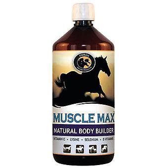 Foran Muscle Max 1 L (Horses , Food , Food complements)