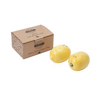 CGB Giftware Loft Lemon Salt and Pepper Pot Set