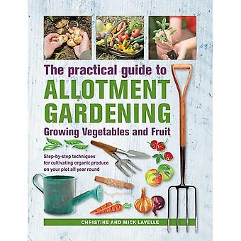 Practical Guide to Allotment Gardening Growing Vegetables a by Chrisine Lavelle