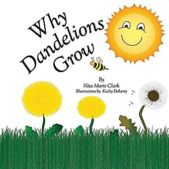 Why Dandelions Grow