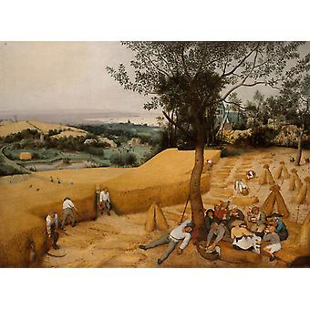 The Harvest, Pieter Bruegel, 50x37cm